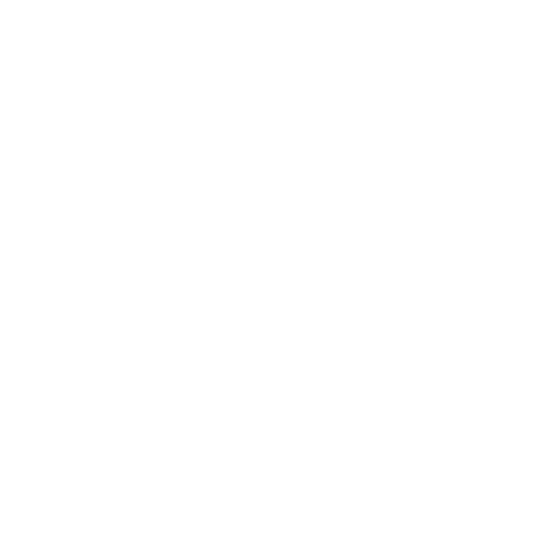 icone logo blanc espace francilien du rachis