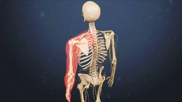 myelopathie cervico arthrosique myelopathie cervicarthrosique et fatigue myelopathie cervicarthrosique irm espace francilien du rachis clinique du rachis versailles paris 2